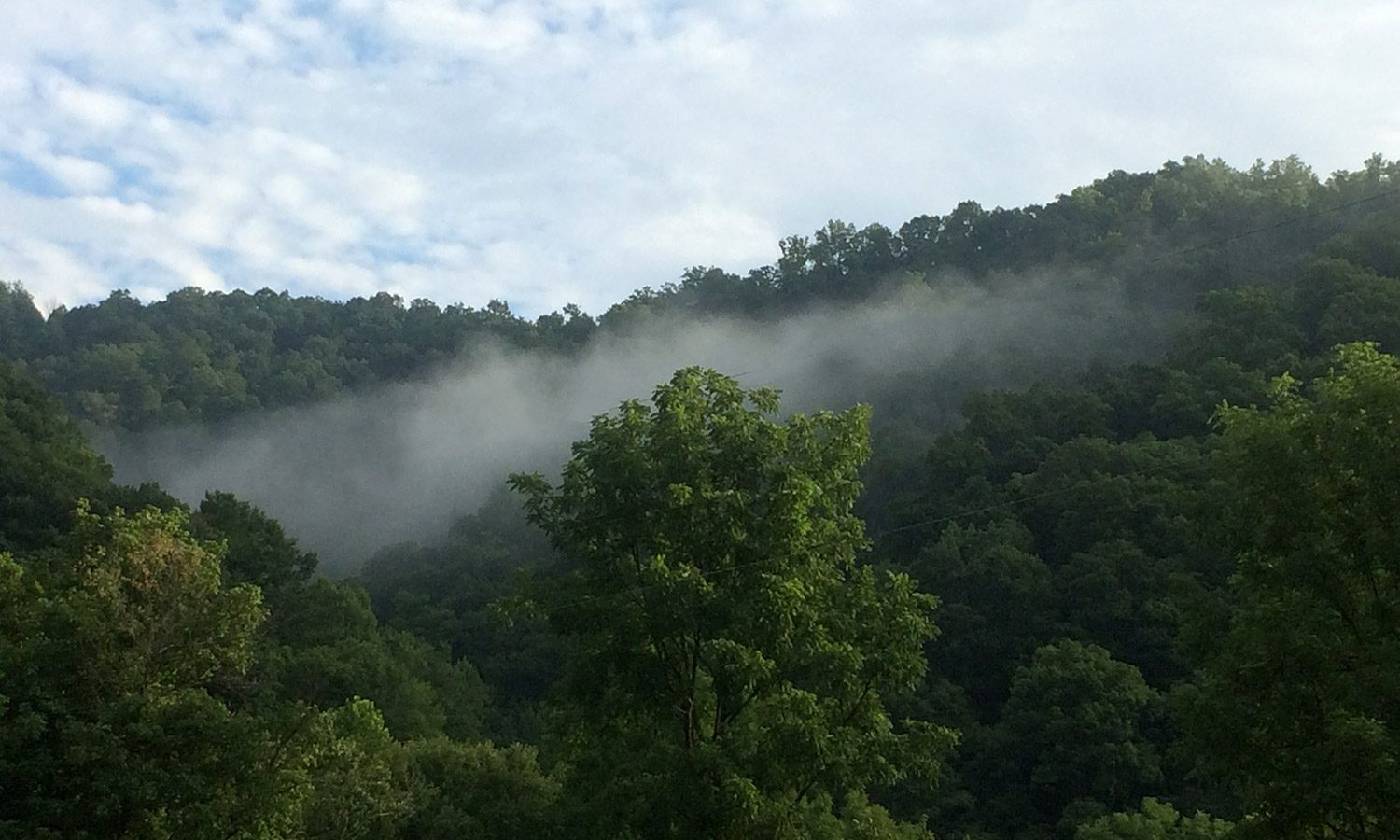 View from Friends Drift Inn Farm, Appalachian Mountains in summer with green foliage and fog
