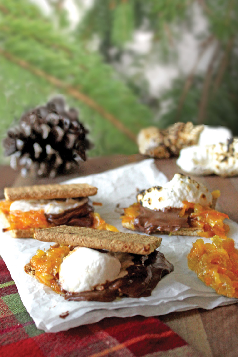 Orange Marmalade S'mores recipe showing stack of s'mores, marshmallows, and marmalade with a pine tree in background