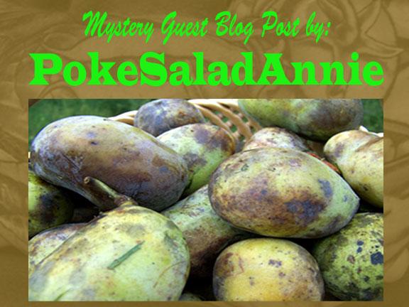 pawpaw poke salad annie | Friends Drift Inn